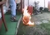 Wenn Idioten mit Feuer spielen