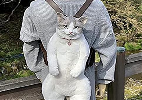 WTF? Katze für den Rücken 🙀🙀🙀