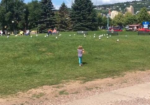 Bruder ärgert seine Schwester mit Vögeln