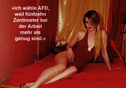 Ich wähle AfD, weil…