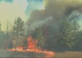 So schnell bewegt sich ein Waldbrand vorwärts