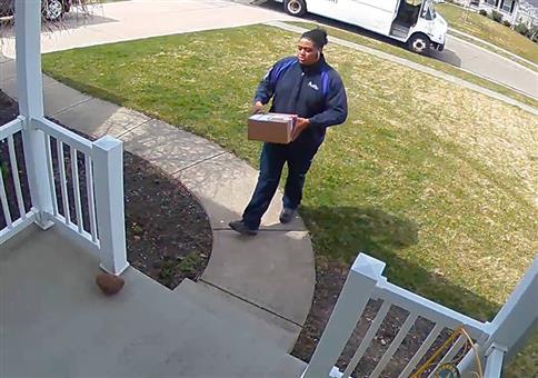 Hund geht auf Postbotin los