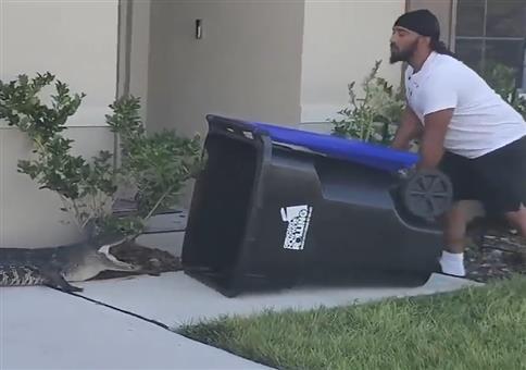 Alligator mit Mülltonne fangen