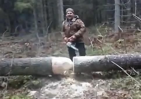 Baum wieder aufrichten