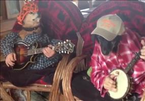 Hunde spielen Banjo