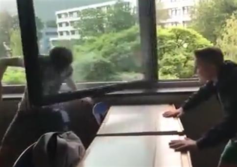 Spiel mit Köpfchen und Fensterscheibe