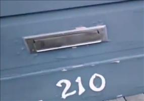Katze nimmt die Post entgegen