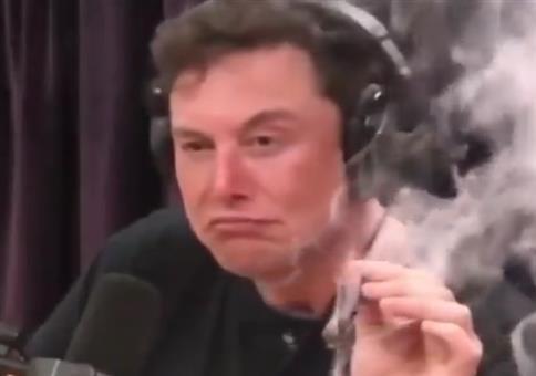 Elon Musk als Baby - Deepfake