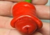 Chili Willy - Chilischoten die wie Penisse aussehen