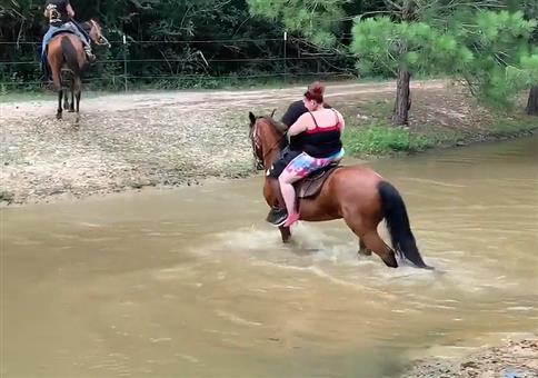 Vollschlanke Menschen reiten auf Pferd durchs Wasser