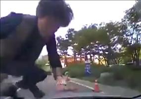 Da wirft sich schon wieder jemand vor ein Auto