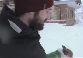 Chihuahua im Schnee
