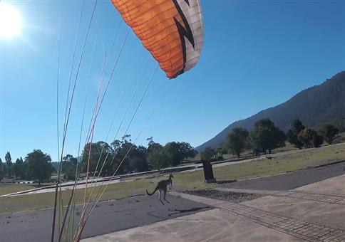 Nach der Paragliding Landung folgt der Angriff