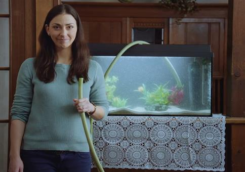 Eindeutig zweideutig: Wasser im Aquarium ablassen