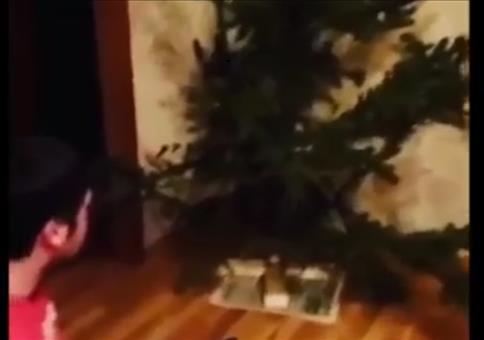 Auch mit dem Weihnachtsbaum geht es einmal zu Ende