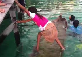 So kann ein kleines Mädchen ein versunkenes Kanu bergen