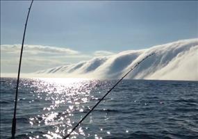 The Fog - Riesige Nebelwand über dem Lake Michigan