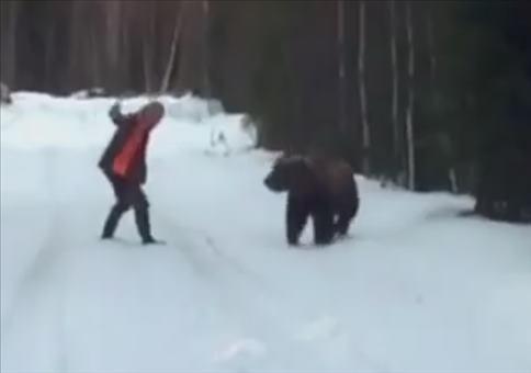 Wenn ein Schwede auf einen Bären trifft