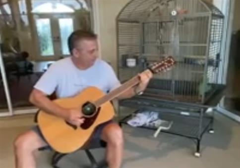Papagei singt zur Gitarre