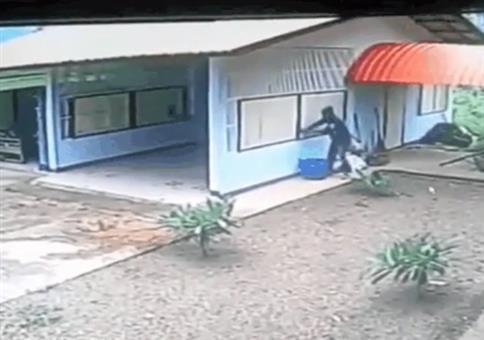 Einbrecher bricht in Garage durchs Fenster ein
