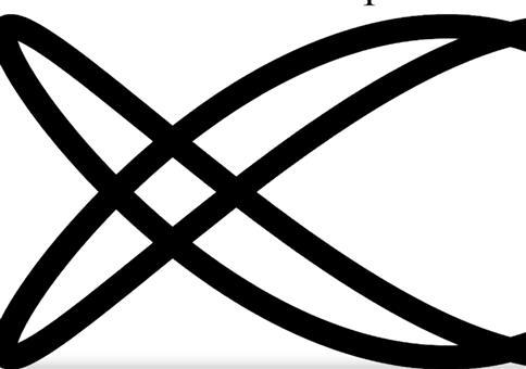 Dual Axis Illusion - Beste Illusion des Jahres 2019
