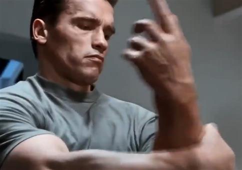 Der Terminator zeigt euch seine Meinung