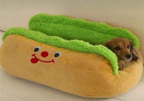 Echter Hot Dog