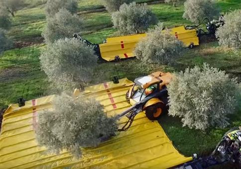 Moderne Technik bei der Olivenernte