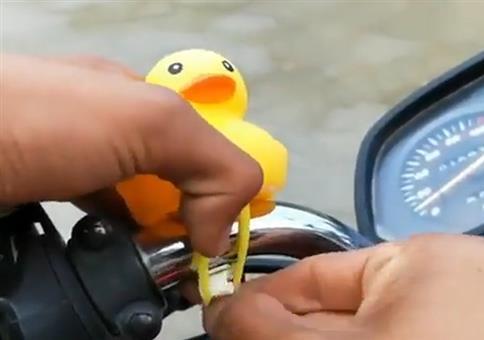 Die Ente fährt mit Motorrad