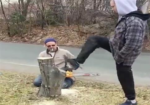 Ein beherzter Tritt gegen den Baumstamm
