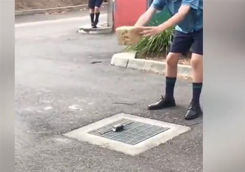 Super Trick: Ziegel auf Dose