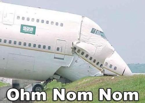 hornoxe.com_picdump183_34