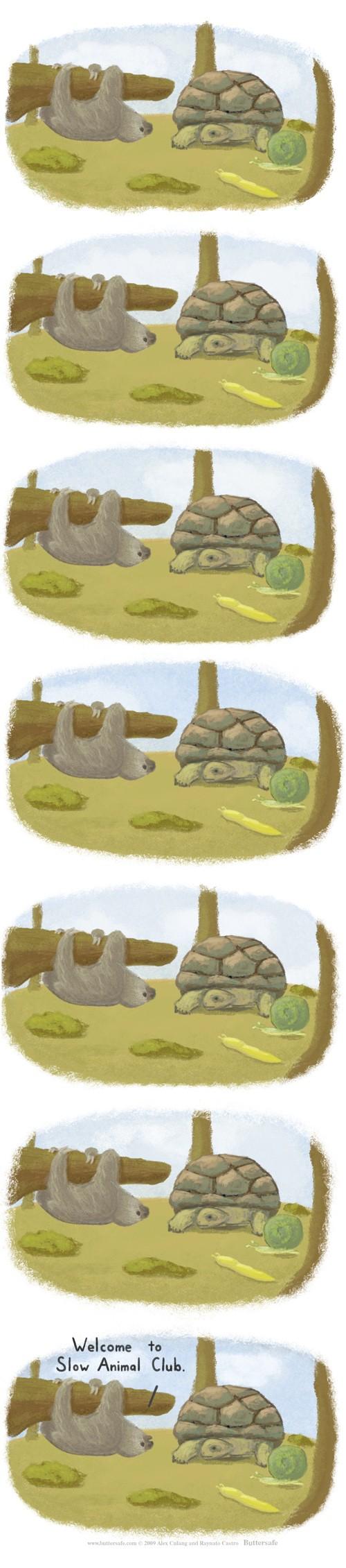 hornoxe.com_picdump199_004
