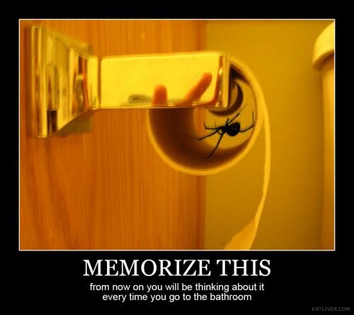 hornoxe.com_picdump280_028