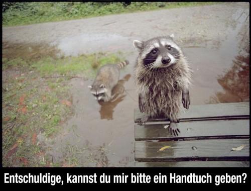 hornoxe.com_picdump283_013