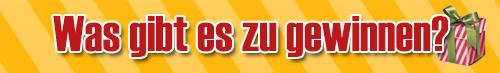 gewinnspiel_adventskalender_2013_gewinne_banner